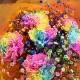 All Rainbow レインボーカーネーションとレインボーかすみ草のブーケ