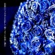 キラキラ青いバラ 30本の花束
