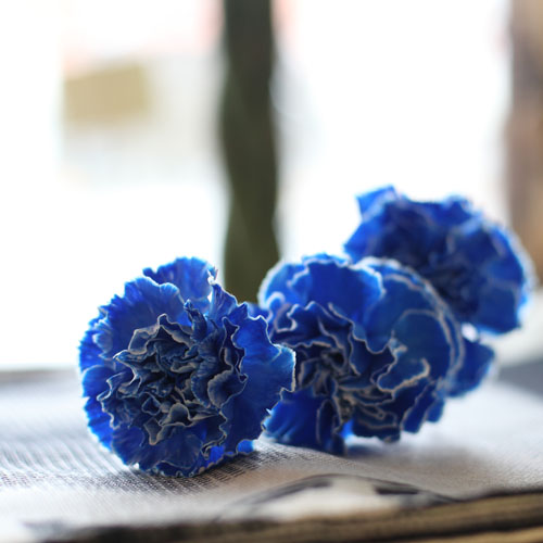 レインボー&青カーネーションのミニアレンジ