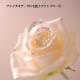 レインボーローズとキラキラ白いバラのミニアレンジ