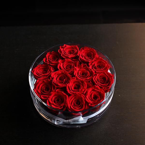 赤薔薇 プリザーブドフラワー ブリリアント(L)