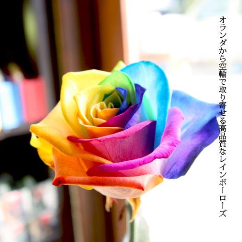 レインボーローズ 50本の花束