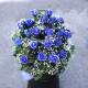 キラキラ青いバラ20本とキラキラかすみ草のアレンジメント