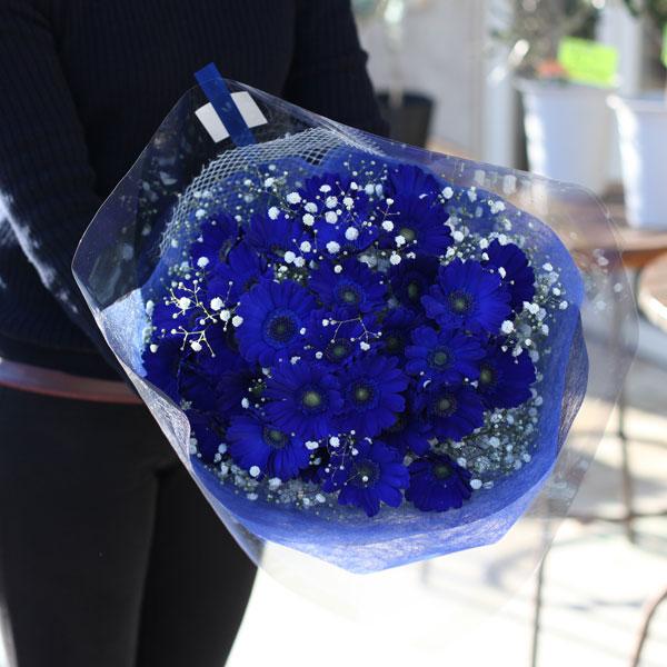 青いガーベラ30本とキラキラかすみ草の花束