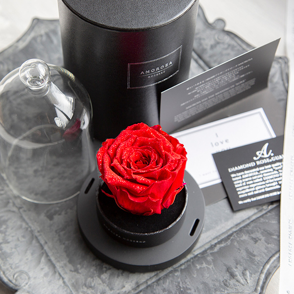 赤薔薇 プリザーブドフラワー リトルベル