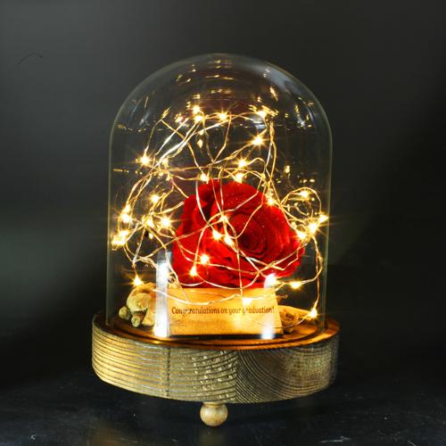 薔薇 プリザーブドフラワー 電飾LEDガラスドーム Short