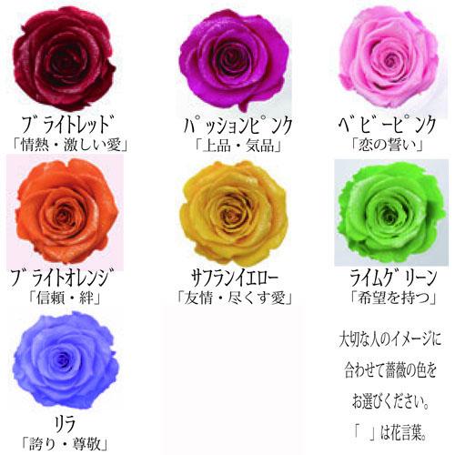 薔薇 プリザーブドフラワー フォトフレーム(横 Lサイズ)