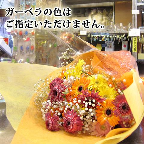 キラキラガーベラ30本とキラキラかすみ草の花束