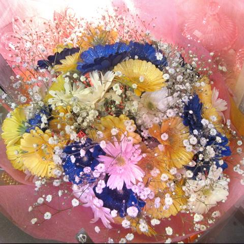 キラキラガーベラ50本とキラキラかすみ草の花束