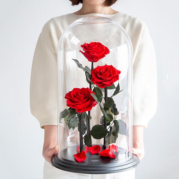 赤薔薇 プリザーブドフラワー デスティニーローズ3本