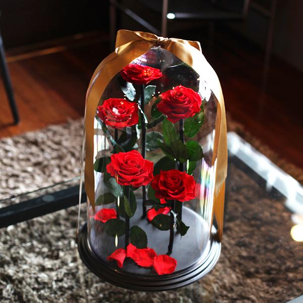 赤薔薇 プリザーブドフラワー デスティニーローズ5本