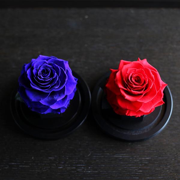 プリザーブドフラワー 赤薔薇 ハートフェルト