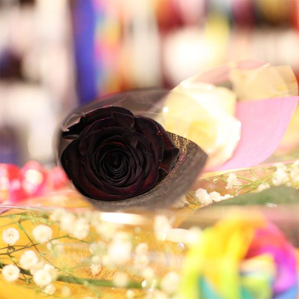 黒薔薇1本ラッピング