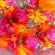 バイカラーガーベラ(ピンク×オレンジ)100本とキラキラかすみ草の花束