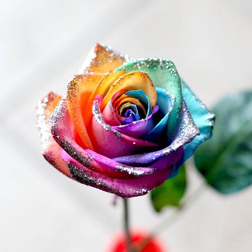 キラキラレインボーローズ 20本の花束