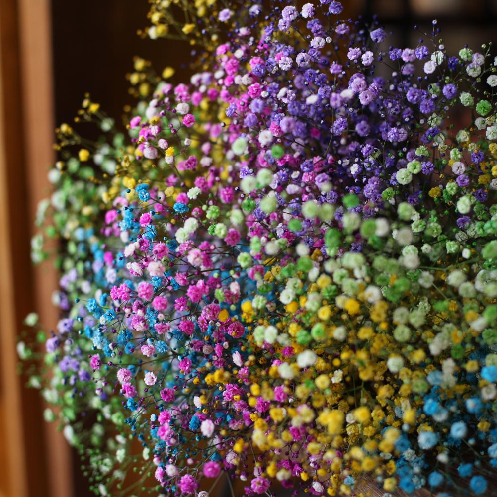 レインボーかすみ草の花束(Medium)