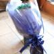 バイカラーガーベラ(グリーン×ブルー)50本とキラキラかすみ草の花束