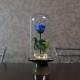 青いバラ プリザーブドフラワー ガラスドーム