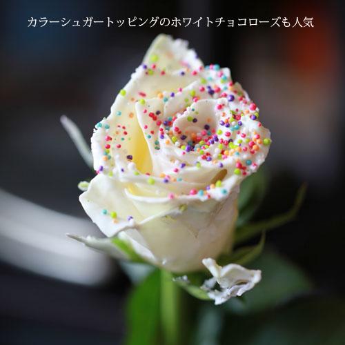 チョコレートローズ 20本の花束
