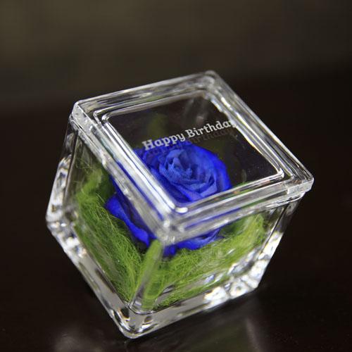 ドライフラワー青いバラ イングラス