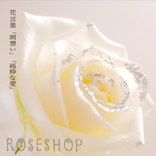 キラキラ白いバラ1本の縦長BOXギフト(生花)