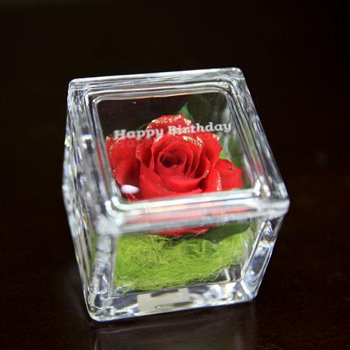 赤薔薇ゴールドラメ ドライフラワー イングラス