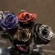 黒薔薇 100本の花束