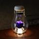 青いバラ プリザーブドフラワー LEDボトル