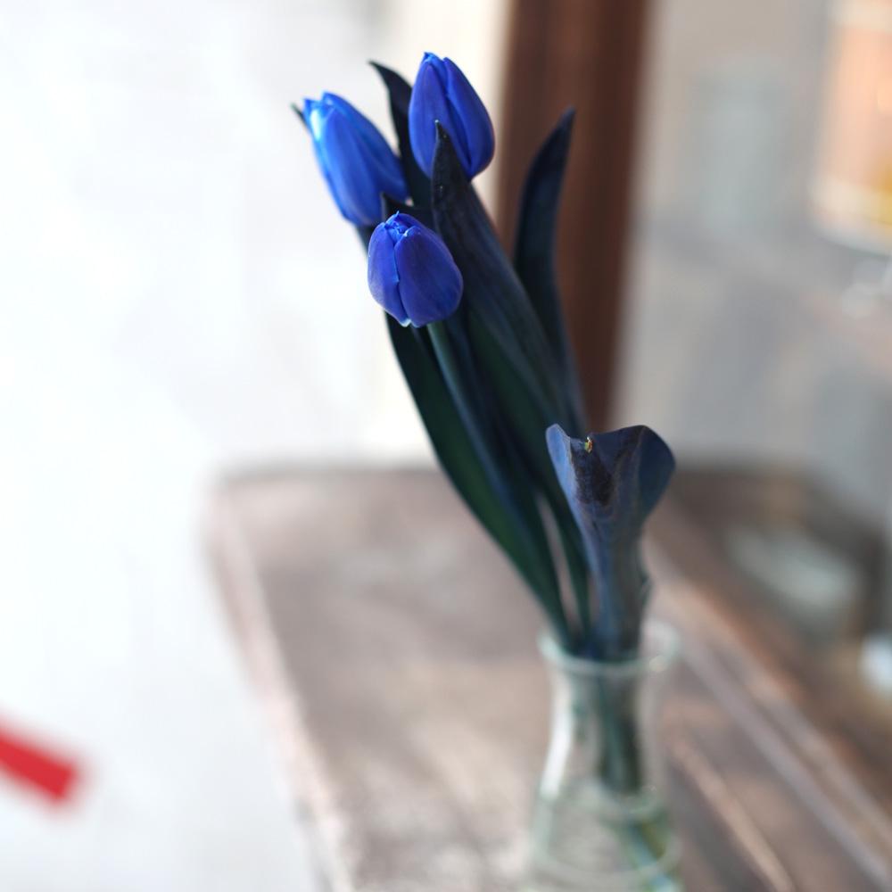 青いチューリップ10本とキラキラかすみ草の花束