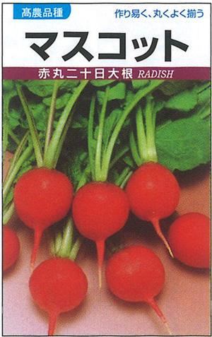 タカヤマシード 廿日大根種子 マスコット