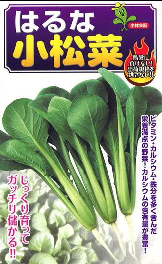 小林 はるな小松菜 【種子有効期限2021年5月末まで】