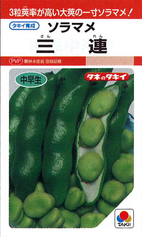 タキイ種苗  ソラマメ種子 三連 [ASM130]
