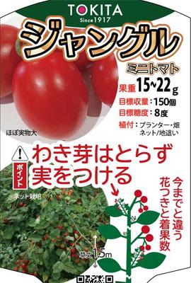 トキタ種苗 ミニトマト種子 ジャングル 【春種予約】