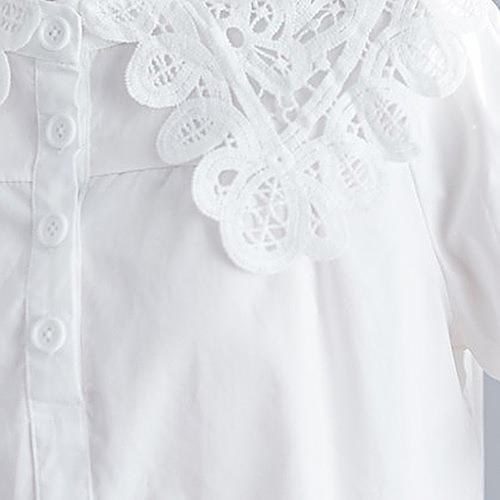 シャツ トップス 襟付き レース 春夏 シンプル ナチュラル カジュアル レディース かわいい  ホワイト  20slt220xyz