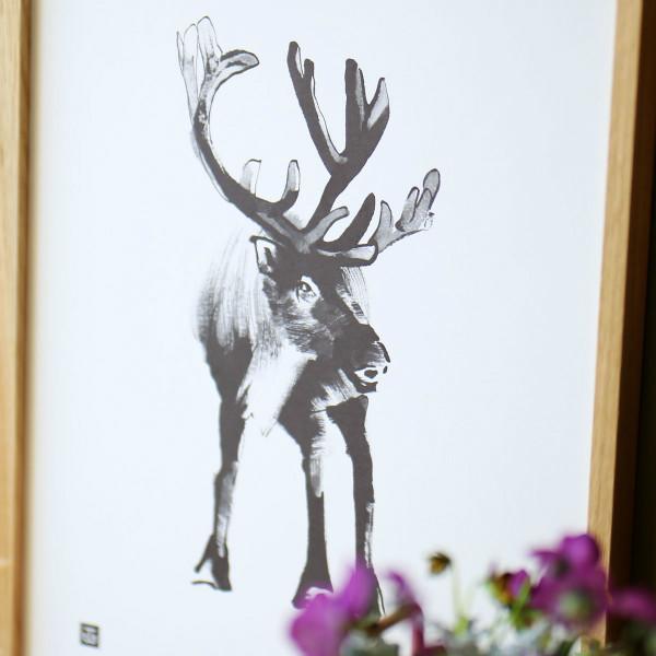 Teemu Jarvi (テーム・ヤルヴィ) ポスター 30×40cm REINDEER (トナカイ) 北欧/インテリア