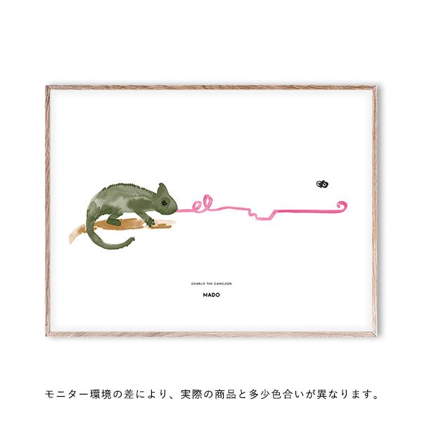 【受注発注】 MADO (マド) ポスター 40×30cm Friends Charlie The Chameleon