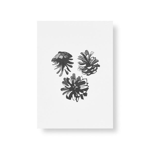 Teemu Jarvi (テーム・ヤルヴィ) ポスター A5 PINE CONES (松ぼっくり) 北欧/インテリア【メール便】