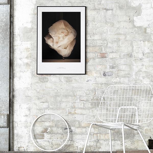 【受注発注】Paper Collective (ペーパーコレクティブ) ポスター 50×70cm Essence of Ballet 01【送料無料】