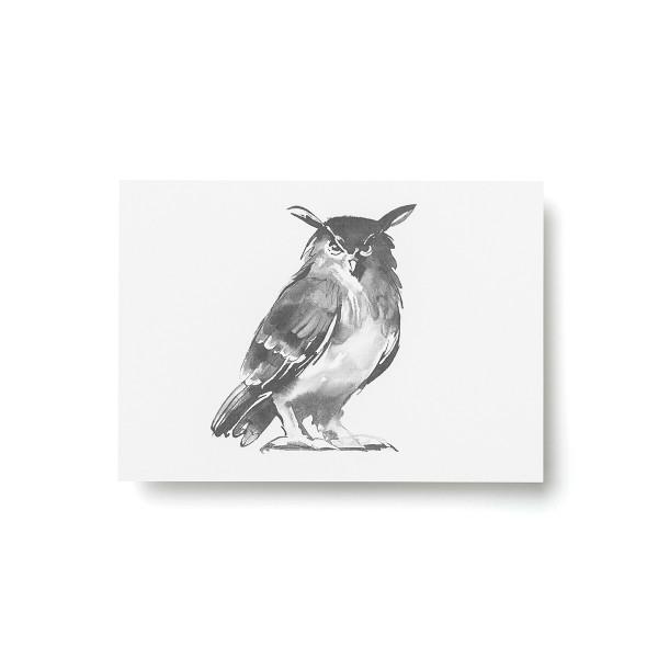 Teemu Jarvi (テーム・ヤルヴィ) ポストカード A6 OWL (ワシミミズク) 北欧/インテリア/ポスター【メール便】