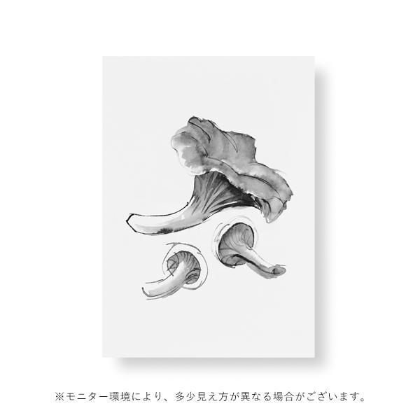 Teemu Jarvi (テーム・ヤルヴィ) ポスター A5 CHANTARELLE MUSHROOM (シャントレルマッシュルーム)北欧/インテリア【メール便】