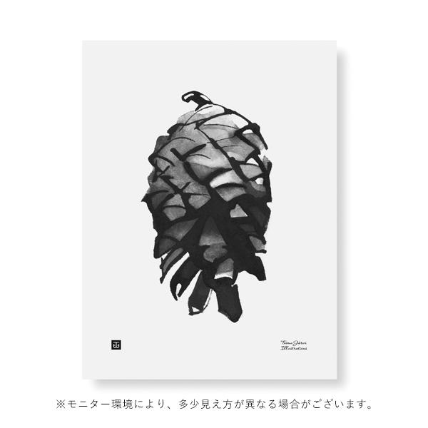 Teemu Jarvi (テーム・ヤルヴィ) ポスター 30×40cm PINE CONE (松ぼっくり)北欧/インテリア