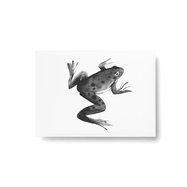 Teemu Jarvi (テーム・ヤルヴィ) ポストカード A6 FROG (カエル) 北欧/インテリア/ポスター【メール便】