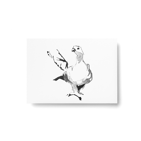 Teemu Jarvi (テーム・ヤルヴィ) ポストカード A6 GROUSE (カラフトライチョウ) 北欧/インテリア/ポスター【メール便】
