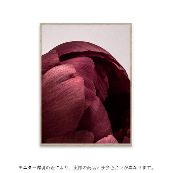 【受注発注】Paper Collective (ペーパーコレクティブ) ポスター 30×40cm Peonia 01
