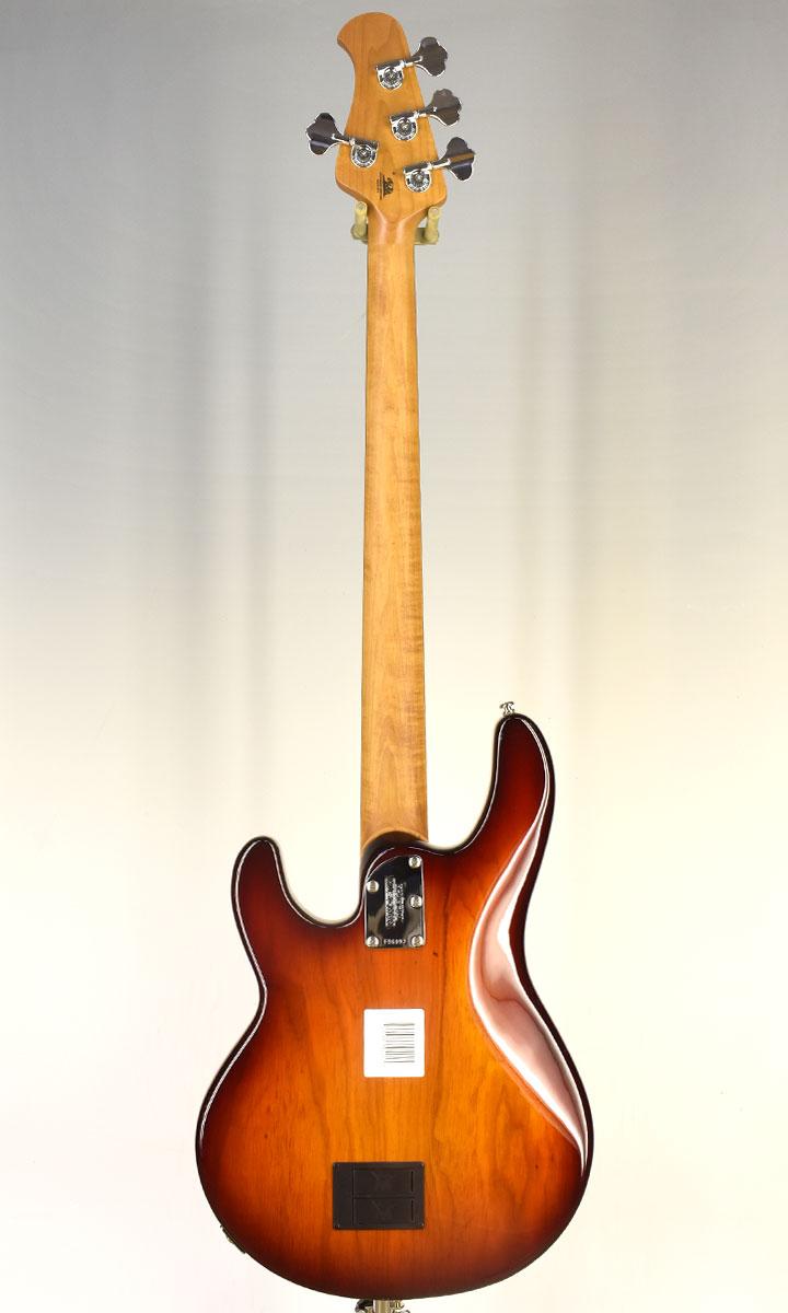 【New】Musicman StingRay4 Burnt Amber Roasted Maple RW 2021 (selected by KOEIDO) 店長厳選、別格の命を持つ最新カラースティングレイ!