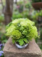香る若草アレンジメント SMALL