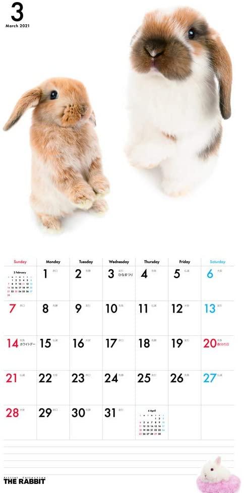 THE RABBIT 2021年カレンダー(大判)