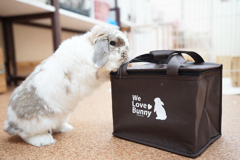We Love Bunny保温・保冷バッグ