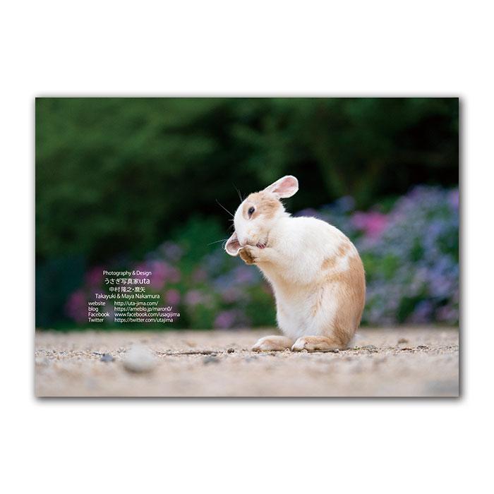 大久野島うさぎカレンダー