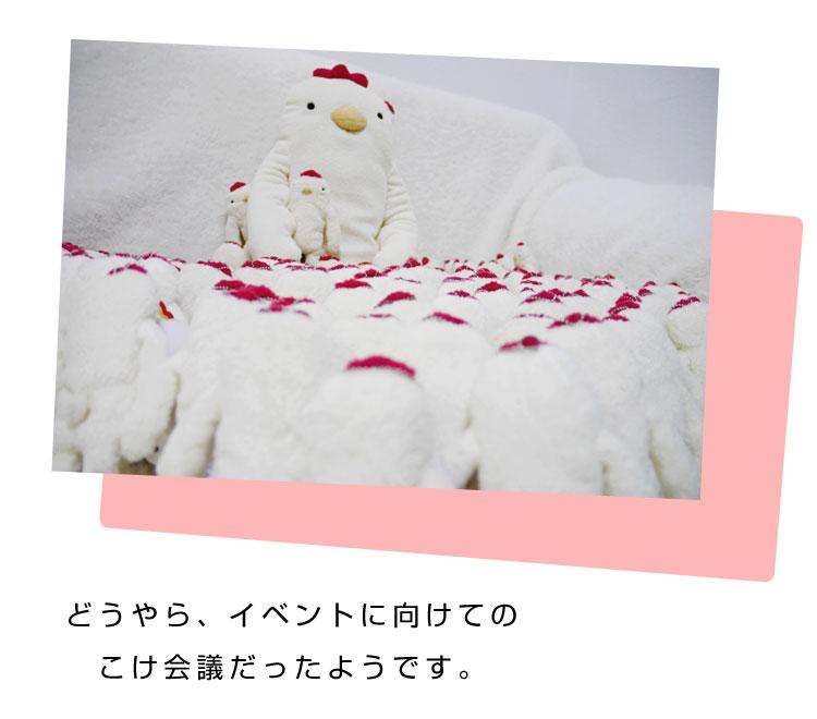 フモフモさん こけこっこ (白・1L)今回綿少し少なめ (かわいい おもしろ ぬいぐるみ グッズ ★ 誕生日プレゼント ギフト 贈り物 に! 彼女 女性 女の子 女友達 プレゼント に最適)